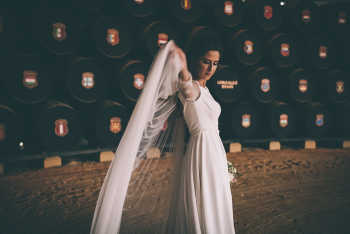 Paloma vuela el velo de boda